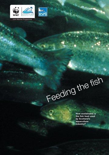 Feeding the Fish - WWF UK