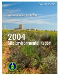 WIPP Annual Site Environmental Report 2004 - Waste Isolation Pilot ...