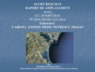 Scurt Rezumat Raport de Amplasament pentru S.C. ROMPETROL ...