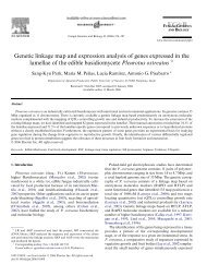 Genetic linkage map and expression analysis of genes expressed in ...