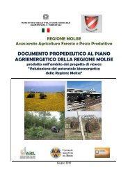 Piano Agrienergetico Regionale - Ufficio Europa