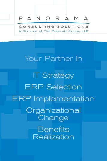 Your Partner In IT Strategy ERP Selection ERP Implementation ...