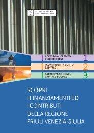 scopri i finanziamenti ed i contributi della regione friuli Venezia giulia
