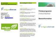 Förderprogramm 2012 - Erdgas Obersee AG