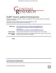 functional genomics A. gambiae AnoEST: Toward - Computational ...