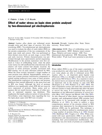 Effect of water stress on lupin stem protein analysed by two - ITQB