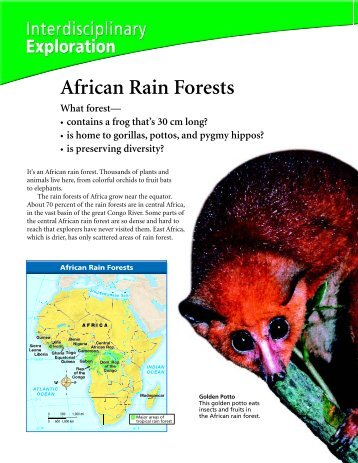 African Rain Forests