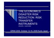 risk transfer instruments - Economics of Disaster Risk Reduction