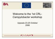Welcome to the 1st CRL-Campylobacter Workshop (pdf) - SVA