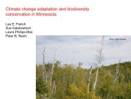 Climate change adaptation and biodiversity conservation in Minnesota