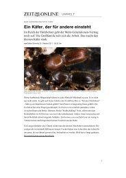 Ein Käfer, der für andere einsteht - Universität Bern