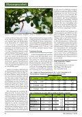 Verwirrung - ein Baustein zur Bekämpfung des Pflaumenwicklers im ... - Seite 2