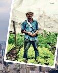 journal - Cidades sem Fome - Page 7