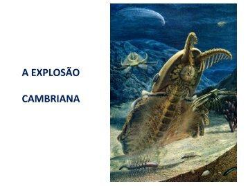 A EXPLOSÃO CAMBRIANA - Instituto de Biologia da UFRJ