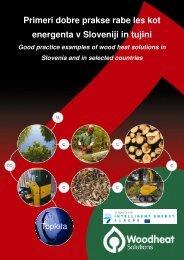Primeri dobre prakse rabe les kot energenta v Sloveniji in tujini
