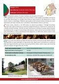 Primeri dobre prakse rabe les kot energenta v Sloveniji in tujini - Page 2