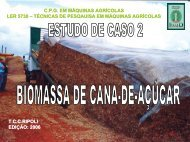 cap.08 ESTUDO DE CASO BIOMASSA.pdf - LEB/ESALQ/USP