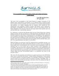 UN Accountability Issues and the Role of NGOs and Global ... - NGLS