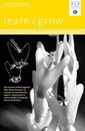 learn+grow - New England Wild Flower Society
