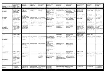Nagyheti es husveti szertartasok a szorvanyban_2013.pdf - Panagia