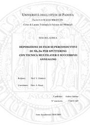 UNIVERSITÀ DEGLI STUDI DI PADOVA - surfacetreatments.it