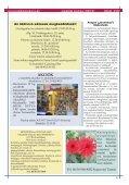 2009 SZEPTEMBER PDF-ben letölthető (6 MB) - Zsámbéki-medence - Page 5