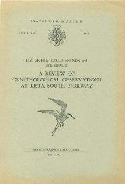 Sterna, bind 1 nr 23 (PDF-file) - Museum Stavanger