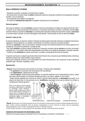 MICROORGANISMOS EUCARIOTAS - 2 Reino HONGOS (=FUNGI)