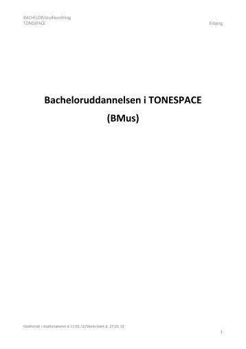 Se hele studieordningen - Syddansk Musikkonservatorium og ...