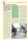 Pferdeland RLP Ausgabe August 2013 - PDF Download - Seite 4