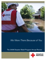 2008 Disaster Relief Program Annual Review - American Red Cross