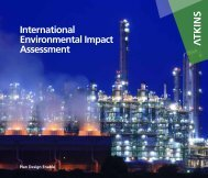 International Environmental Impact Assessment - Atkins
