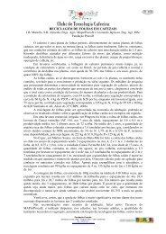 RECICLAGEM DE FOLHAS EM CAFEZAIS - Fundação Procafé