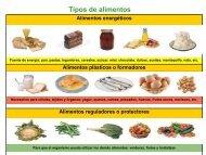 Tipos de alimentos - Gobierno de Canarias