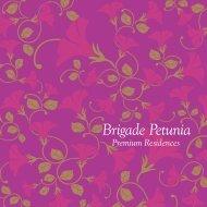 Brigade Petunia E-Brochure