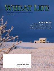 'X' marks the spot - Wheat Life