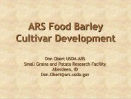 New barley variety development Dr. Don Obert, ARS Small Grains and ...
