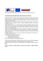 Co je to komunitní plán - Libčice nad Vltavou