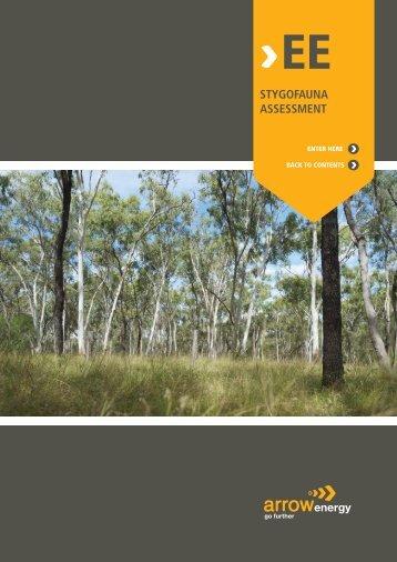 STYGOFAUNA ASSESSMENT - Arrow Energy