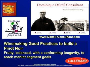 Dominique Delteil Consultant