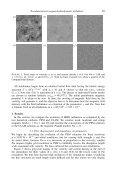 magnetohydrodynamics - University of St Andrews - Page 5