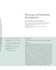Bioenergy and Sustainable Development? - Mistra