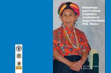 Metodología para Fortalecer la Equidad y la ... - Cubaenergia