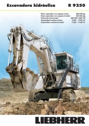 Excavadora hidráulica R 9250