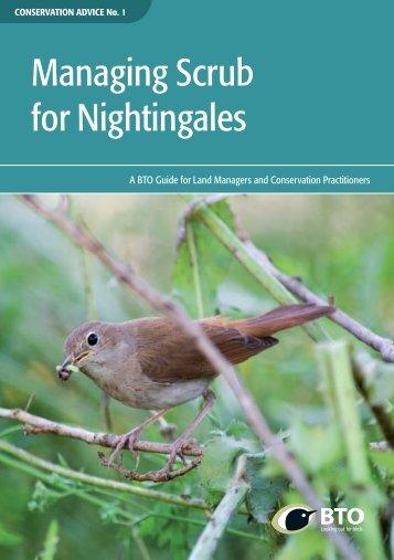 managing-scrub-nightingales-2015-04-29