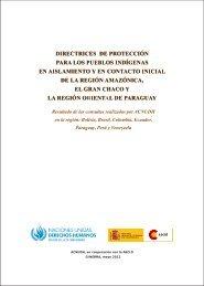 Directrices de Protección para los Pueblos Indígenas en ... - Acnudh