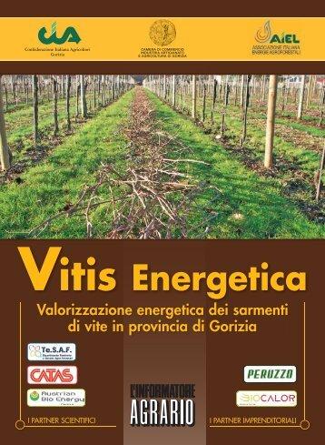 Vitis Energetica - Arsia