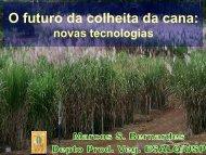 o futuro da colheita da cana-de-açucar - OPEC