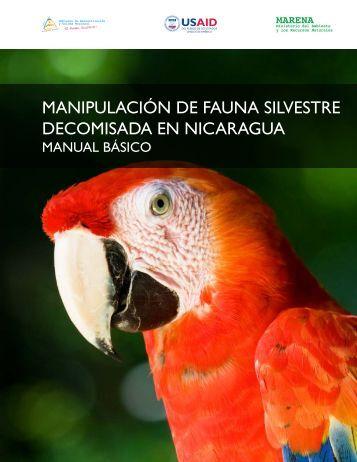 manipulación de fauna silvestre decomisada en nicaragua - caftadr ...