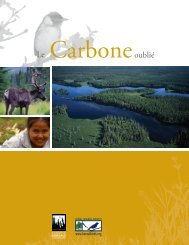LE CarbonE oubLié - the Boreal Songbird Initiative